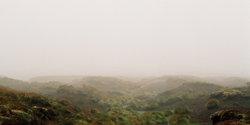 Screenshot from Andrea Arnold's Wuthering Heights