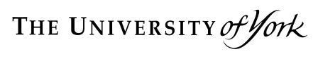 university_of_york_logo_low_res_1_large